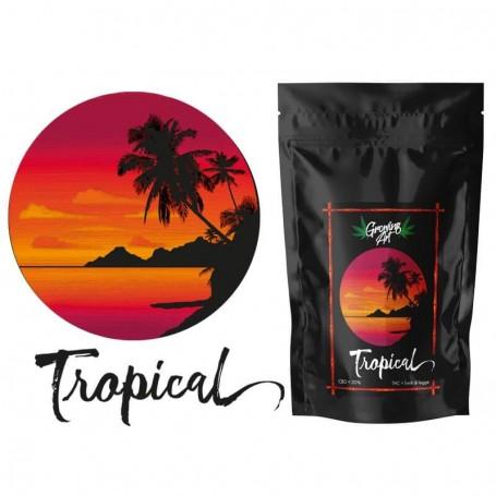 Growing Art Tropical Cannabis Light Legale 3 gr