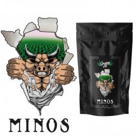 Growing Art Minos - Charas di Cannabis Light Legale 1 gr