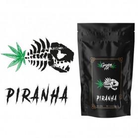 Growing Art Piranha Cannabis Light Legale CBD