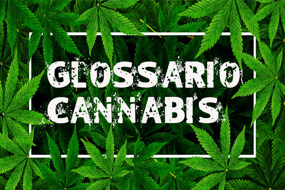 growing art cannabis light canapa legale cbd glossario blog